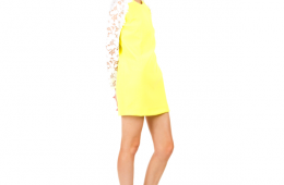 Christopher Kane Resort Crepe Dress with Lace Sleeve