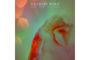 Sad Baby Wolf Electric Sounds thumbnail
